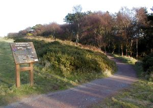 There is an excellent carved route guide at the start of each walk